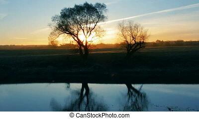 sunrise landscape with tree and lake