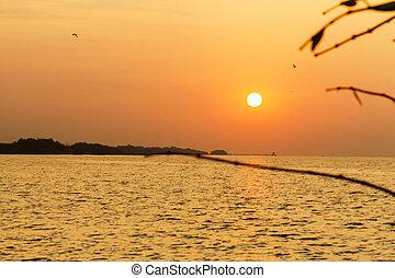 Sunrise morning on beach