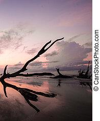 sunrise on a calm and empty beach