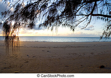 Sunrise on a deserted beach in Cape Tribulation, Northern ...