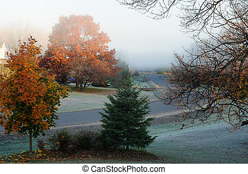 Frosty Fall Morning
