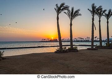Sunrise on a peninsula of Hurghada