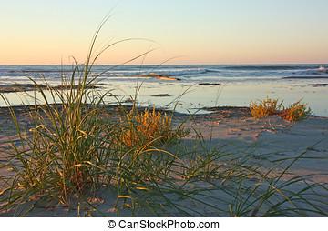 Sunrise on an Ocean Beach