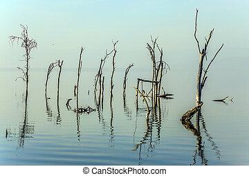 Sunrise on lake