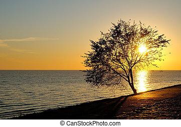 Sunrise on seaside