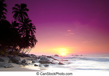 Sunrise on Sri Lanka - Beautiful colorful sunrise over sea ...