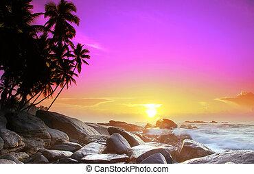 Sunrise on Sri Lanka - Beautiful colorful sunrise over sea...