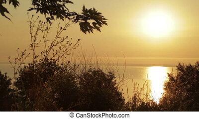Sunrise on the nature
