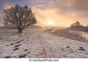 Sunrise over a frozen landscape in The Netherlands - A foggy...