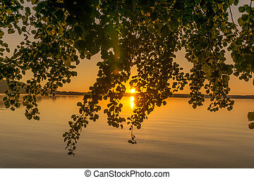 Sunrise over a small lake with trees
