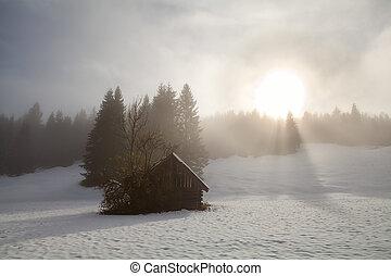sunrise over alpine snow meadow
