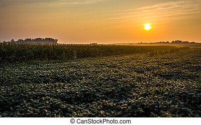 Sunrise over farm fields in rural York County, Pennsylvania.