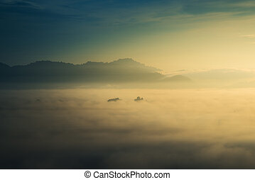 sunrise over fog and mountain in forest.
