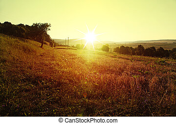 meadow in rural areas - sunrise over meadow in rural areas ...