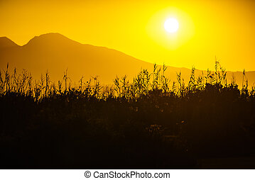 Sunrise over mountain hill - Scenic sunset or sunrise sun...