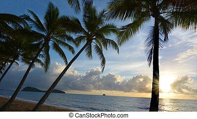 Sunrise over Palm Cove Queensland Australia - Sunrise over...