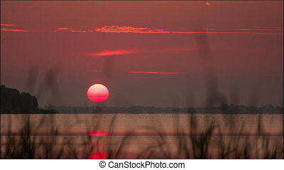 Sunrise over the lake, summer morning, timelapse