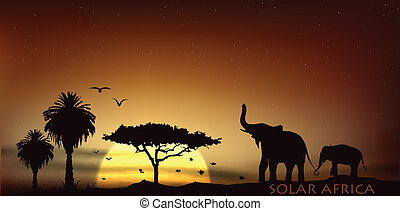 sunrise over the savannah with African elephants and trees...