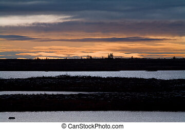 sunrise over the tundra - the sun rises over the tundra,...