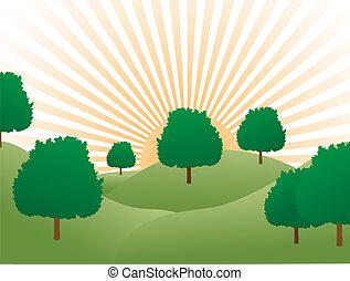Sunrise over tree covered hills