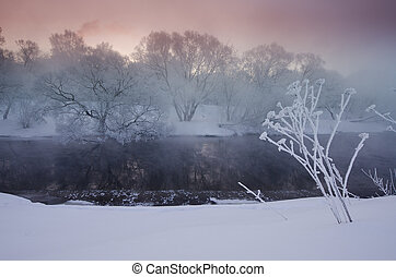 sunrise over trees covered with hoar near a river