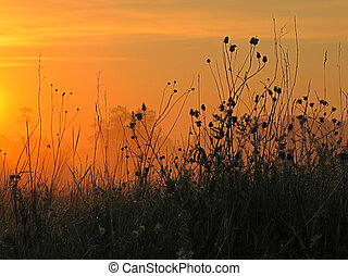sunrise - Photo take the Canon G5 digital camera.