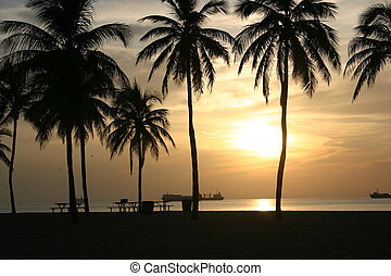 sunrise in Ft. Lauderdale