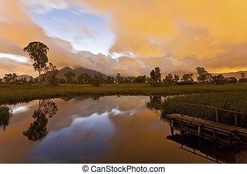 Sunrise pond at wetland