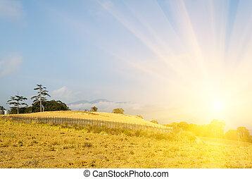 Sunrise rural scenery
