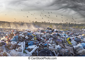 beautiful foggy dawn of the Sun over a huge field of urban garbage, saturated with poisonous fumes of decomposition of organic waste and household chemicals