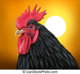Sunrise with a rooster