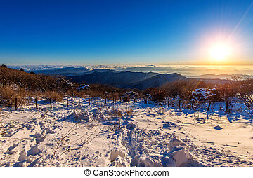 Sunrise with beautiful Lens Flare at Deogyusan mountains in winter, South Korea.