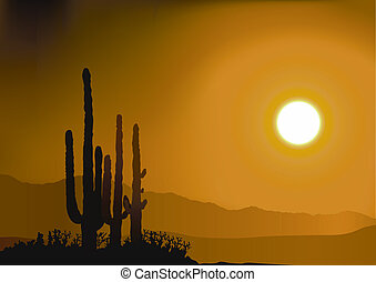Sunset And Cactus Silhouettes