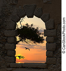 Sunset and seagulls through the old castle