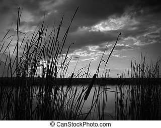 Sunset at lake, thunderclouds and grass on a shore