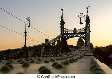 Liberty Bridge - Budapest, Hungary
