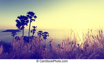 Sunset at Promthep Cape, Phuket, Thailand (Vintage color...