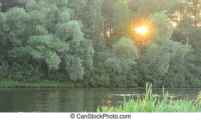Sunset at river with sun light coming through green tree foliage
