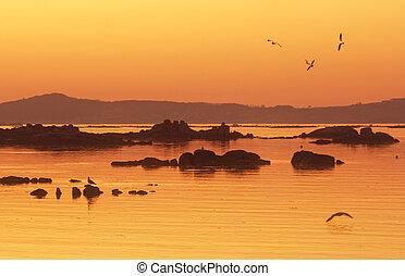 Sunset at rocky estuary