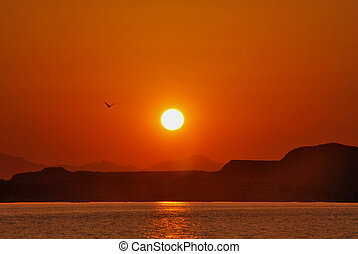 sunset at sea with mountains and bird