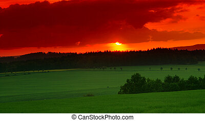 Sunset at spring