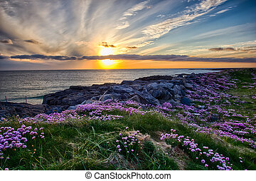 A beautiful sunset at Tangasdale Beach (Outer Hebrides)