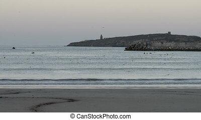 Sunset at the beach in the arabian gulf seascape, Essaouira,...