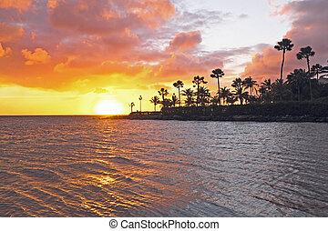 Sunset at the beach on Aruba