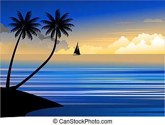 Sunset at the beach - Sunset beach