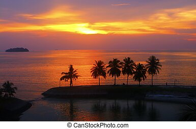 Sunset at the beach with silhouette palm trees