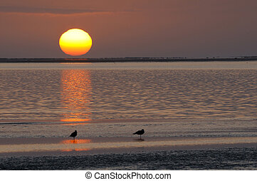 Sunset at the lagoon, Walvisbaai, Namibia