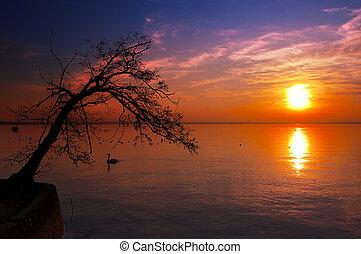 Sunset at the Lake - Garda Lake - Italy