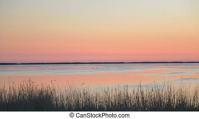 Sunset at the pond seashore with fl