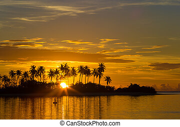Sunset at the seaside, dark silhouettes of palm trees and amazing cloudy sky